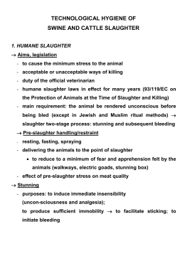 Technological hygiene of swine and cattle slaughter (1)