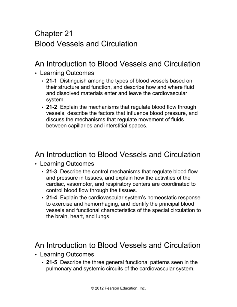 An Introduction To Blood Vessels And Circulation