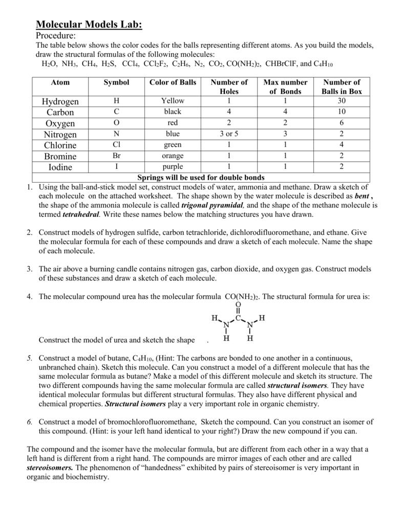 worksheet Making Molecular Models Worksheet molecular models lab