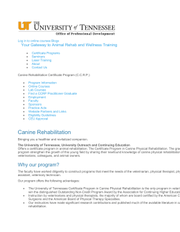 Canine Rehabilitation | UT Certification Courses and Seminars | The
