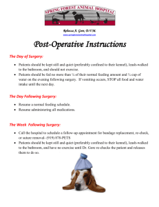 Post-Operative Patients - Spring Forest Animal Hospital | Raleigh NC