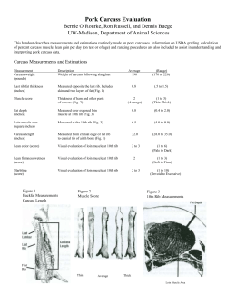 Carcass Measurements and Estimations