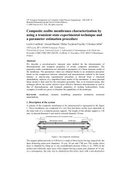 Composite Zeolite Membranes Characterization by Using a