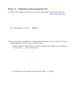 Physics 12 Magnetism and Electromagnetism WS