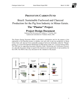 Project Design Document - Capacity Development for the CDM