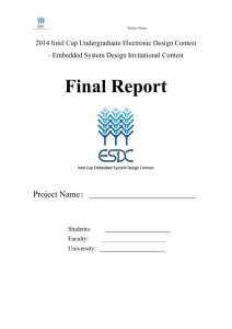 Attach 2: Final report template
