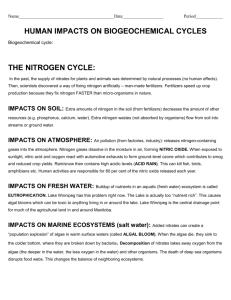 HUMAN IMPACTS ON THE NITROGEN CYCLE