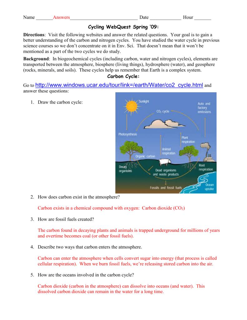 Biogeochemical Cycles Webquest Answer Key