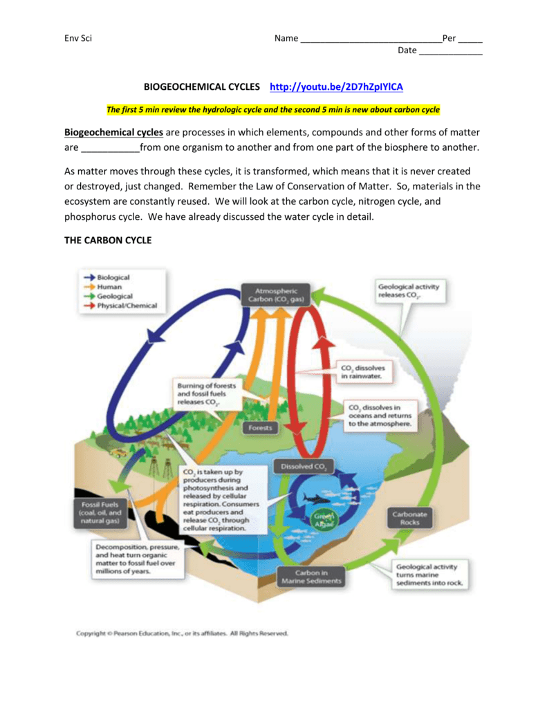 Biogeochemical Cycles Packet – Biogeochemical Cycles Worksheet