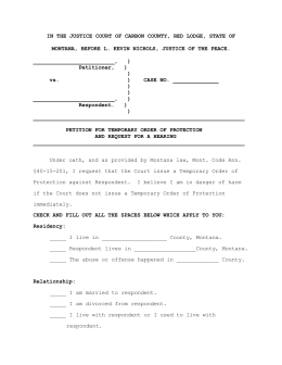 Protection Order Application