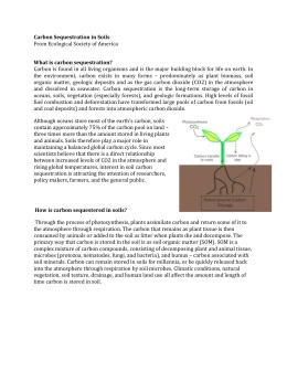 Carbon Sequestration in Soils