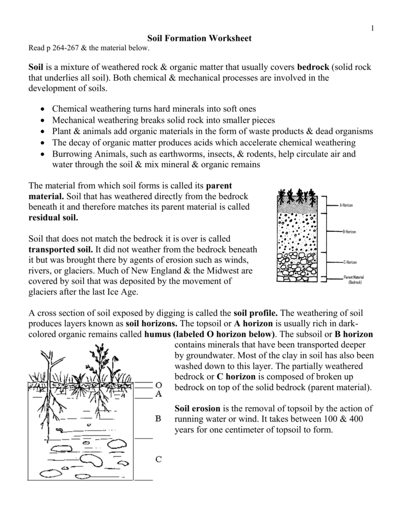 Uncategorized Watershed Worksheet soil profile worksheet termolak delibertad