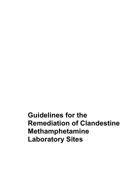 Guidelines for the Remediation of Clandestine