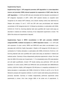 """E-Bike Protection tôles /""""Curana/"""" 28/"""" sans bus Noir, 50 mm de large 2015"""