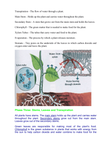Transpiration - The flow of water through a plant
