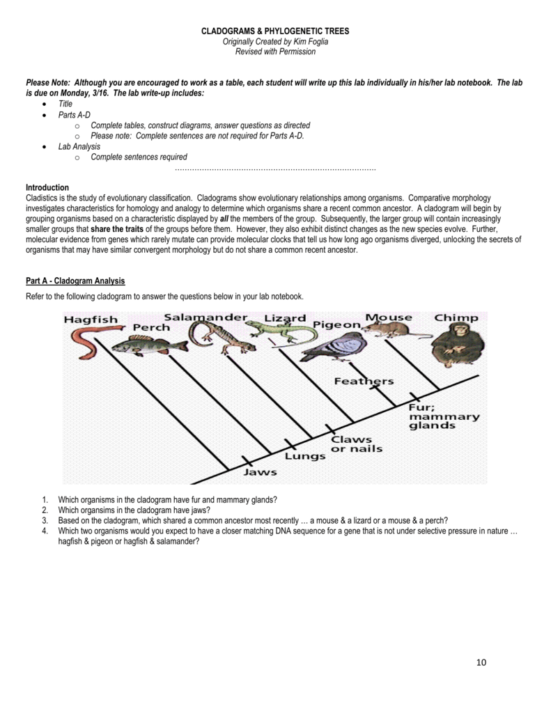Organism Dna Sequence Of Mutations