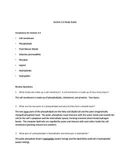 Ifsac Arff Study Guide - torticollis.org
