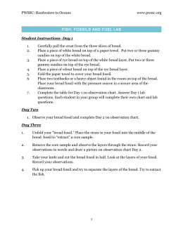 H2O Lesson 3 Lab Worksheets