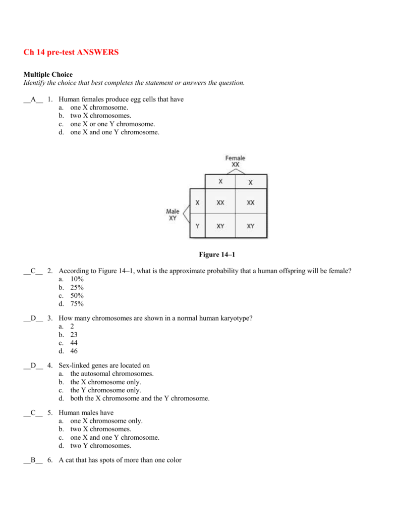 worksheet Section 14 2 Human Chromosomes Worksheet Answers ch 14 pre test answers