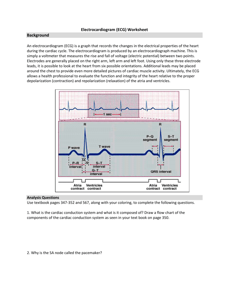 Electrocardiogram Ecg Worksheet Background An Electrical Drawing Text Book