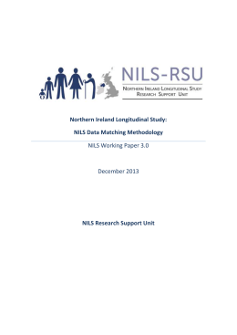 NILS Working Paper 3.0 (DOCX 905kB)