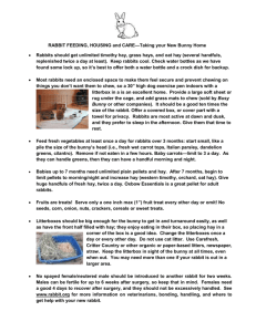 One Page Home Care Handout
