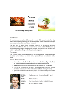Autumn Herbal medicine course – Reconnecting