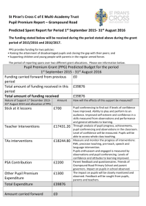 St Piran`s Cross C of E Multi-Academy Trust Pupil Premium Report
