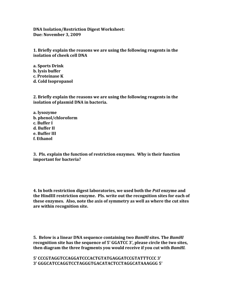Restriction Enzyme Worksheet High School Worksheets for Education – Restriction Enzyme Worksheet