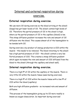 Internal and external respiration during exercise