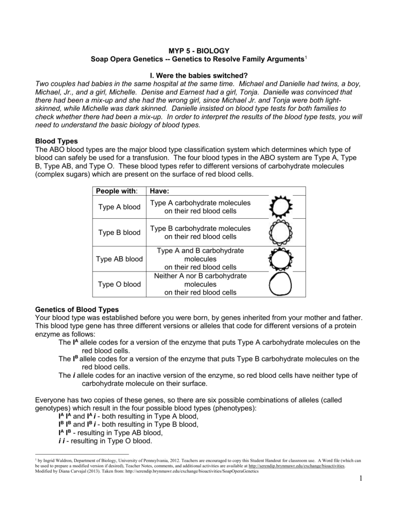 Uncategorized Blood Type Worksheet myp 5 biology soap opera genetics