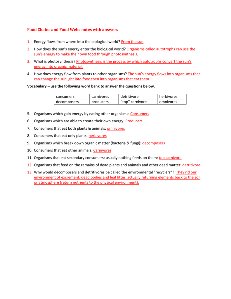 worksheet Ecological Pyramids Worksheet Answers ecological pyramids notes with answers