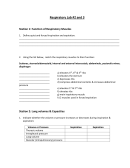 Respiratory Lab #2 &3 (please print out)