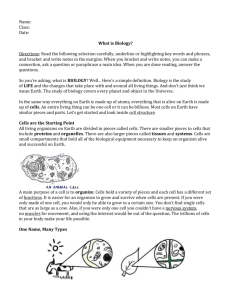 What is Biology? - Odyssey Charter School
