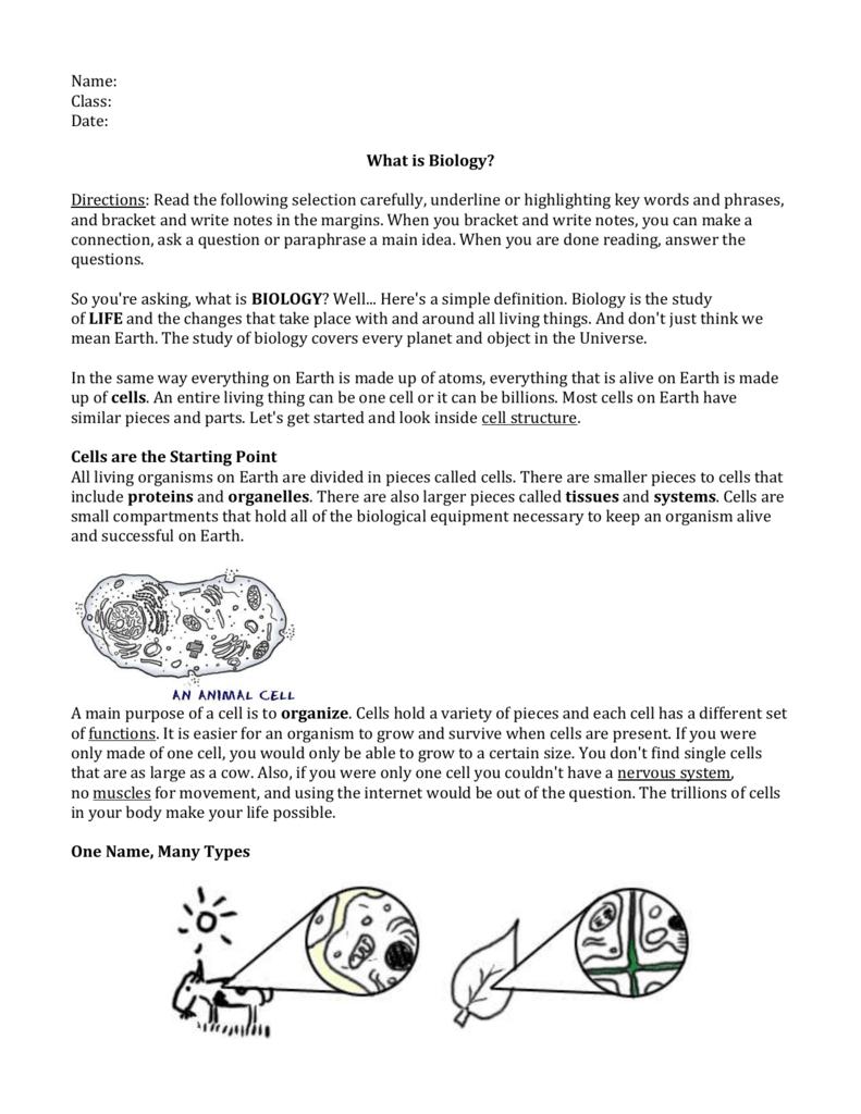 Workbooks » Prentice Hall Biology Worksheets Answer Key - Free ...