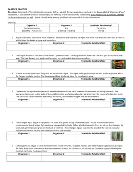 answer sheet how are microscopic protest and fungi classified essay Biology 3b laboratory protist diversity  these include the fungi, plantae and  microscopic algae that form the basis of most marine food chains.