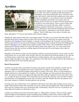 Dairy Cattle Breeds