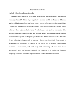 Supplemental methods Methods of fixation and tissue dissection