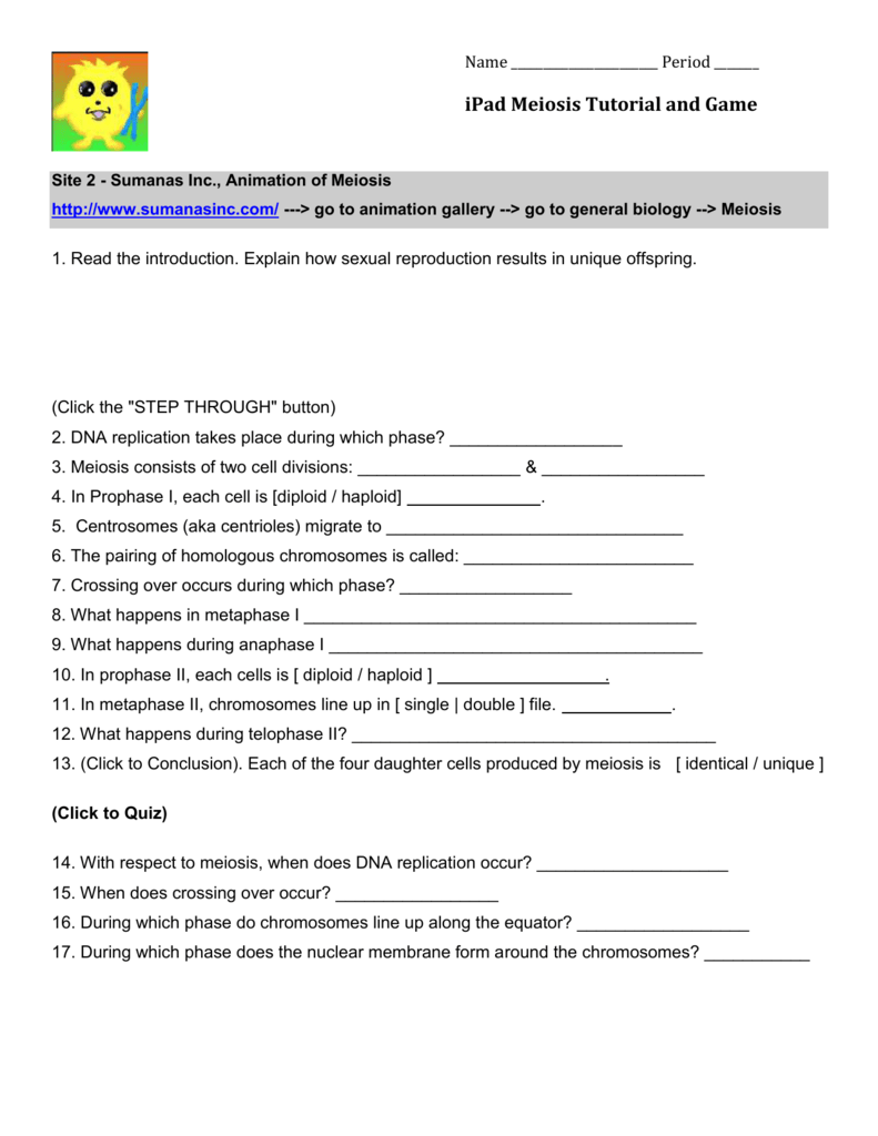 worksheet Snurfle Meiosis Worksheet ipad meiosis tutorial