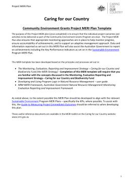 File community environment grants project meri plan template docx ccuart Images
