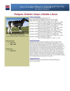 Pedigree: Grafeeti x Super x Shottle x Aaron