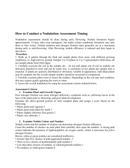 How to Conduct a Nodulation Assessment Timing