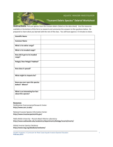 """Tsunami Debris Species"" Debrief Worksheet"