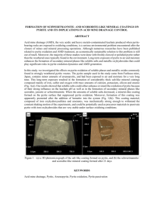 formation of a scorodite-like mineral coating on pyrite and its