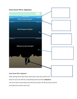 unit1_6_Ocean Zones Fill In organisms