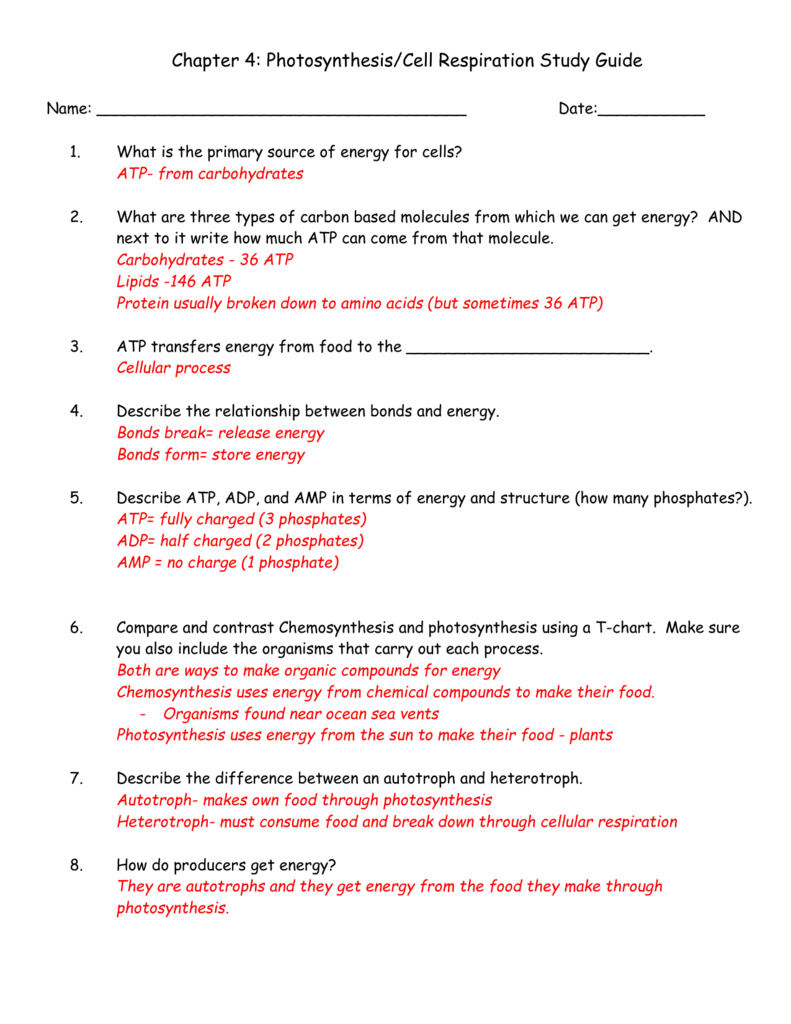 worksheet. Comparing Photosynthesis And Cellular Respiration ...
