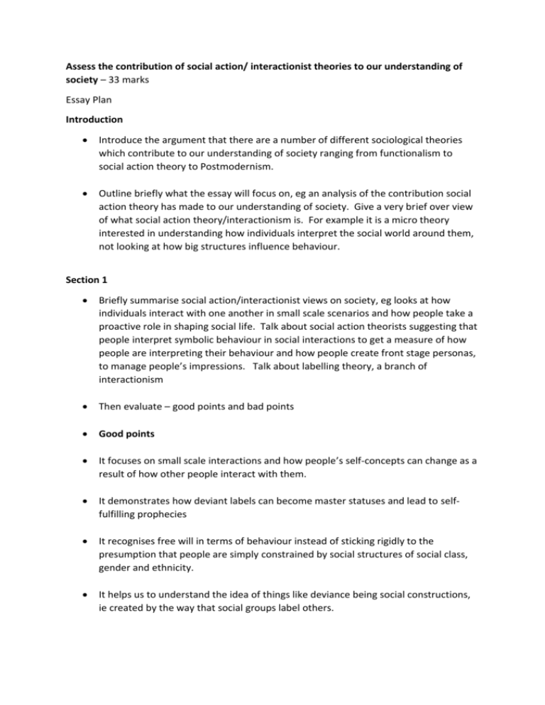 contribution essay hierarchy in perspective social sociology sociophysiological toward