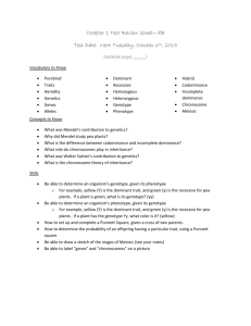 8B Chapter 1 Test Review Sheet