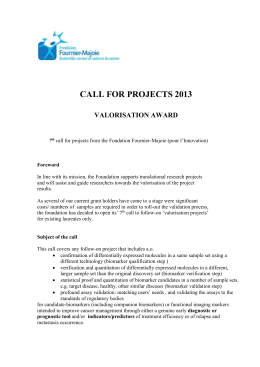 FFM_Call-for-Projects-2013[word