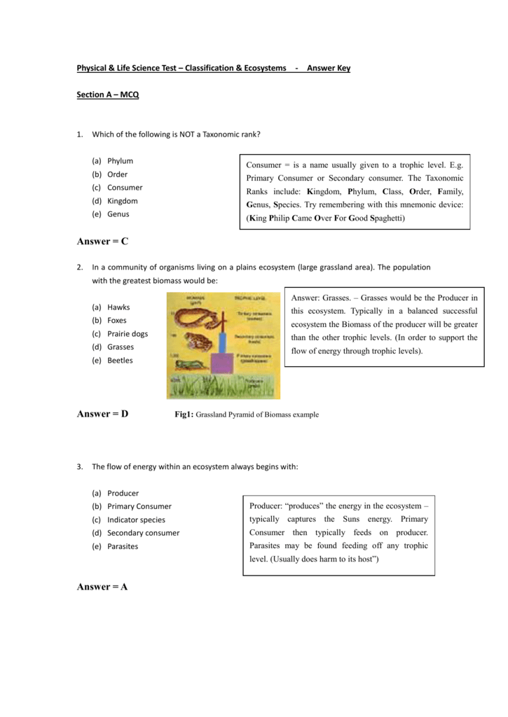 Physical & Life Science Test – Classification & Ecosystems
